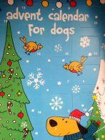 dog advent